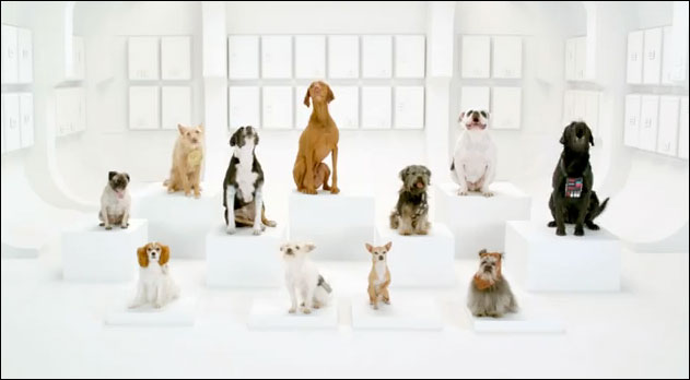 dogs sing star wars volkswagon commercial