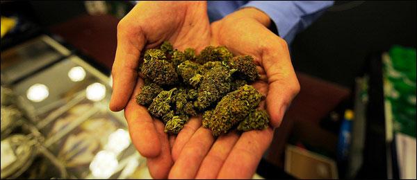 marijuana legal in washington and colorado 2012