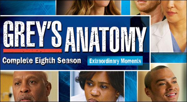 greys anatomy season 8 dvd review